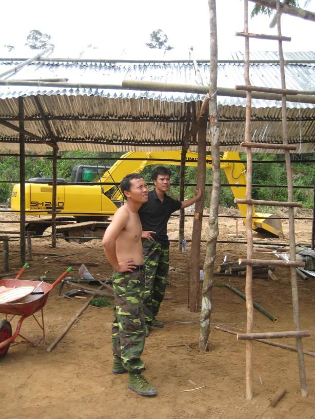 Chặt cây làm nhà